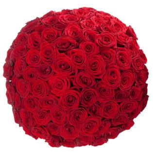 Акция! Розы Красные 101 шт.